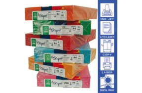 PAPERS & CARTONS FAVINI